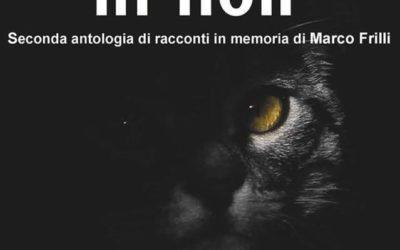 Gunther Sander torna in 44 gatti in noir